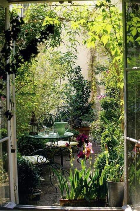terrasse vegetalisee avec images jardin dhiver