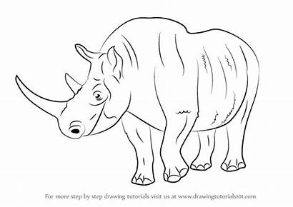 Draw Rhinoceros Woolly Drawing Step Animals Extinct