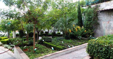 giardini terrazzati immagini giardino della minerva