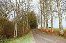 Accommodation Near Hay On Wye Trowley Farmhouse