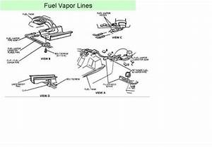 1992 Chevy Corsica Engine Diagram : 1992 chevy corsica smell gas fumes from outside car ~ A.2002-acura-tl-radio.info Haus und Dekorationen