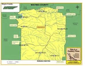 Wayne County Tennessee Map
