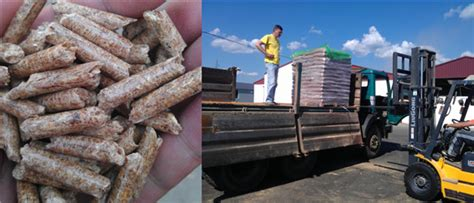 wood pellet plant project  serbia case study