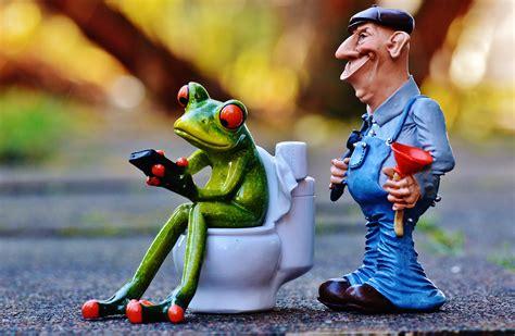 pömpel für toilette bakgrundsbilder person spela s 246 t reparera toalett groda leksak mobiltelefon rolig