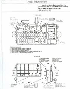 2000 Civic Si Fuse Box Diagram