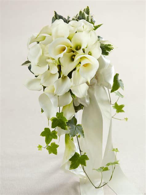calla bouquet pictures white calla lily cascade bouquet