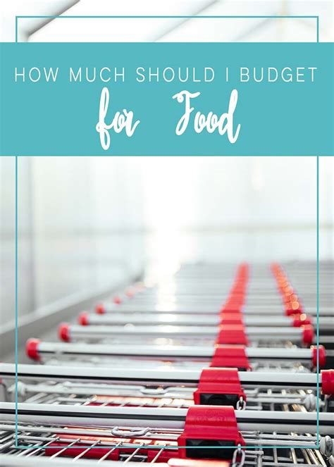 How Much Should I Budget For Food  The House Of Plaidfuzz