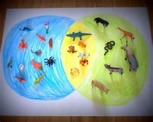 Venn Diagrams  Water Animals And Animals On Pinterest