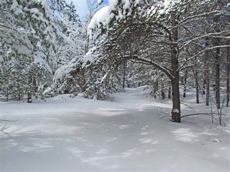 agatelady adventures   winter wonderland