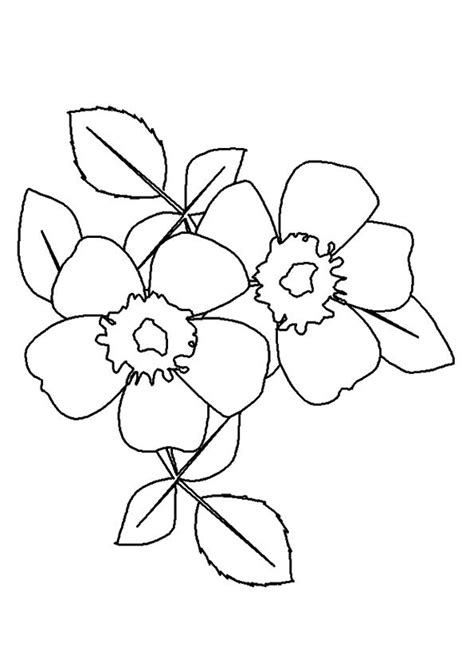 printable rose coloring pages rose coloring pictures