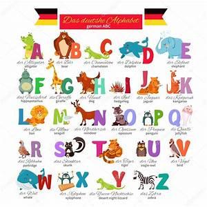 Animal Qui Commence Par U : alphabet allemand illustr zoo image vectorielle funnyclay 103122030 ~ Medecine-chirurgie-esthetiques.com Avis de Voitures