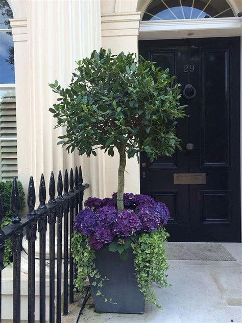 front door planters ideas the 25 best ideas about front porch planters on pinterest potted plants flower pots and