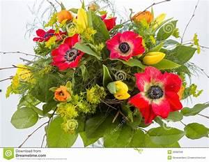 Bilder Von Blumenstrauß : blumenstrau der fr hlingsblumen lizenzfreie stockfotos bild 29382598 ~ Buech-reservation.com Haus und Dekorationen