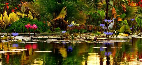 Beautiful Pond In Spring Wallpaper And Background Image