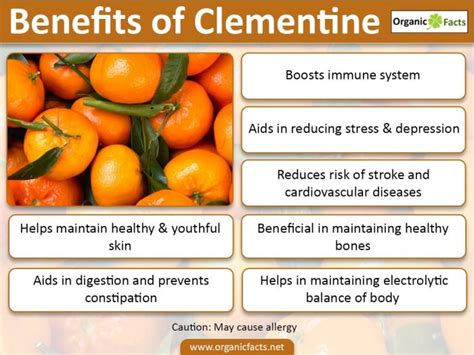 9 best benefits of clementines organic facts
