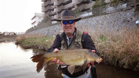 top   wanted fish  japan  tokyo fly