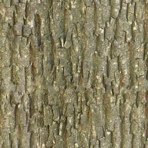 Tileable bark texture