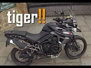 Triumph Tiger 800 Xc X
