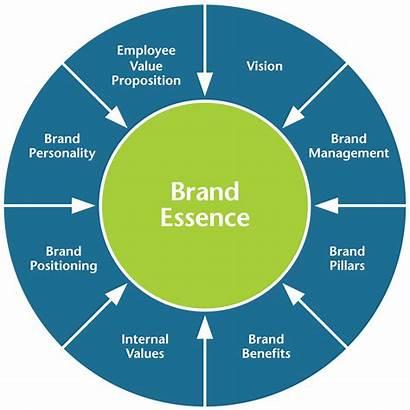 Brand Essence Strategy Branding Blueprint Marketing Position