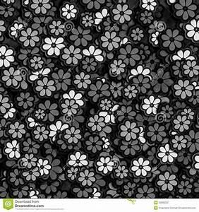 Black And White Flower Pattern Stock Illustration - Image ...