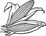 Coloring Corn Indian Getdrawings sketch template