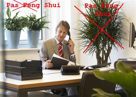 feng shui orientation bureau plante feng shui bureau