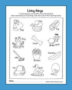 living  worksheet  images science worksheets