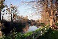 Hagaman Park Merced County