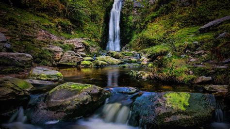 waterfall small mountain river rock clear water forest
