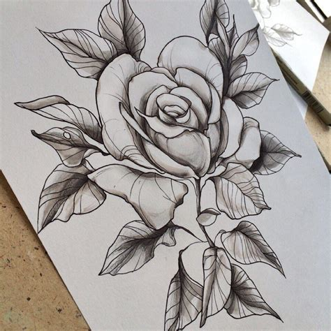 Rose Tattoo Sketch By Family Ink  Family Ink Tattoo