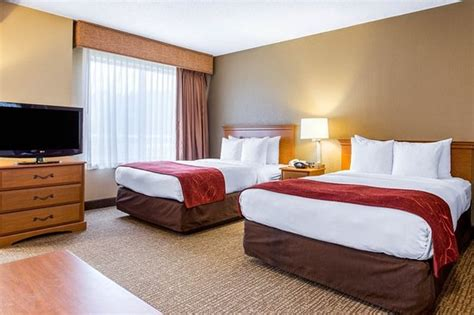 comfort suites   updated  prices