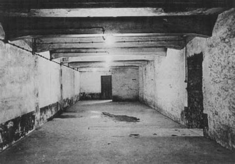 chambre a gaz auschwitz chambre gaz auschwitz libération 1945 enfants de l 39 histoire