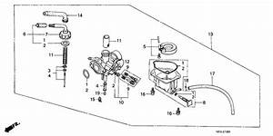 Carburetor For 1982 Honda Z50