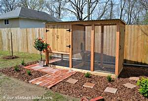 Vintage Home Love  Our New Coop