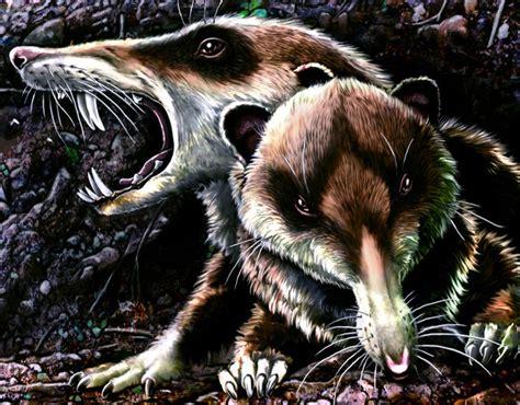saber toothed squirrel bridges  million year gap