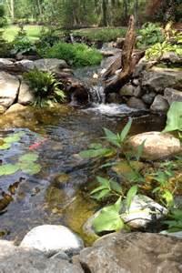 Back Yard Garden Pond Stream
