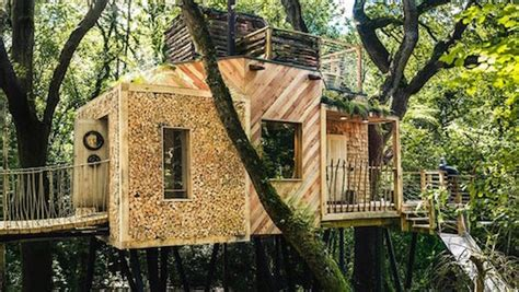 Jetson Green-glamping In A Treehouse