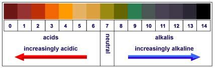 Determination Of Ph Of Given Solutions Using Ph Paper