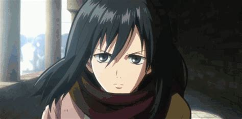 mιĸaѕa acĸerмan anime amino