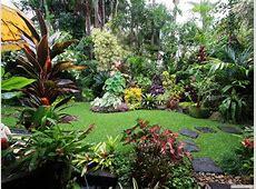 Dennis Hundscheidt's tropical garden, Queensland superb