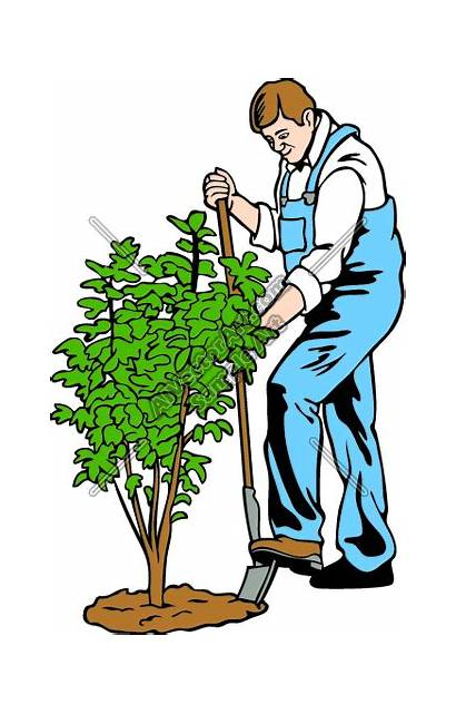Clipart Landscaping Clip Worker Clipartmag