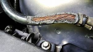 Why Rodents Are Chewing Up Car Wires And What You Can Do