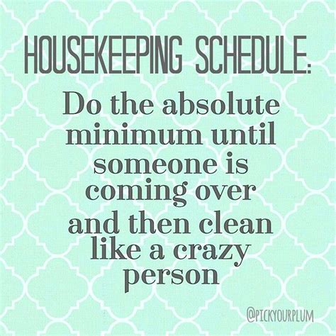 funny cleaning quotes  pinterest housewife