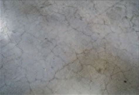 surface crazing concrete producer cracking  crazing