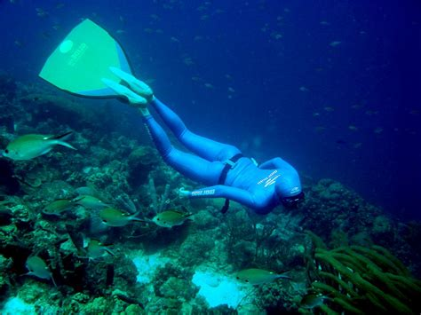 are you brave enough for free diving live love