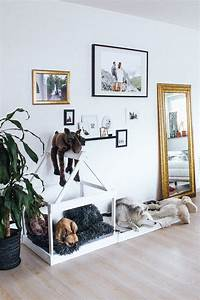 Hundehütte Für Drinnen : diy hundeh tte f r die wohnung selber bauen too spoil my dog with dog rooms dog bedroom ~ Watch28wear.com Haus und Dekorationen