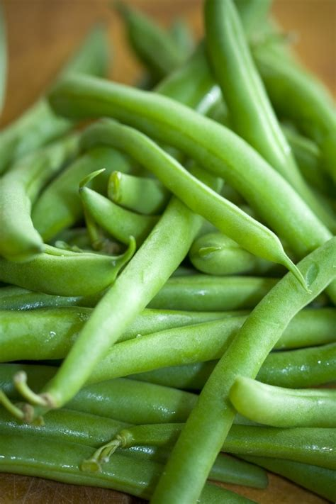 freezing string beans mudga agriculture food products suppliers frozen green beans egyptian frozen green beans