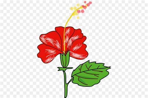 gambar bunga kembang sepatu kartun