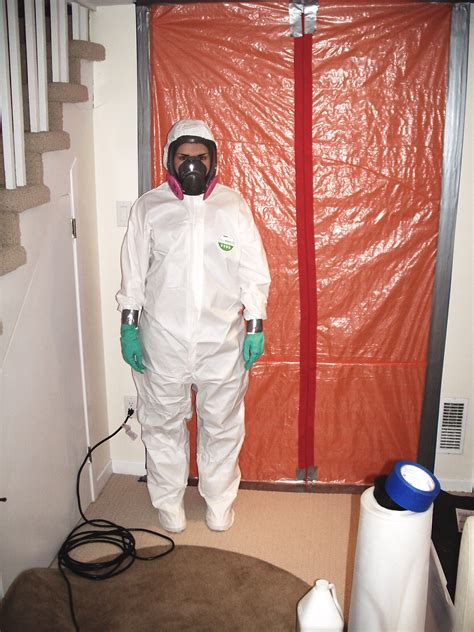 certified visible mold inspection  kitchener