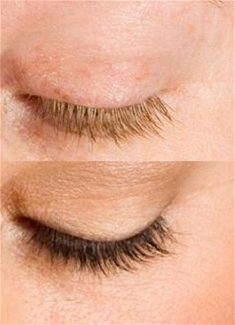 eyelash tinting ideas  pinterest lash tint